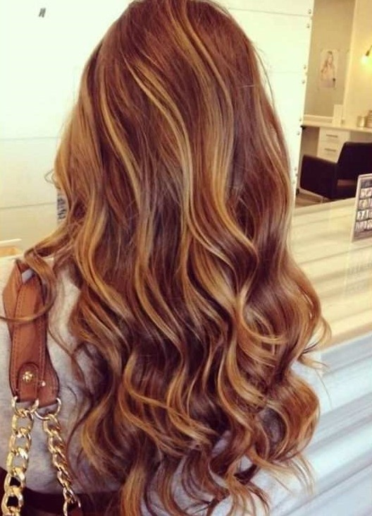 Cinnamon Hair Color With Caramel Highlights