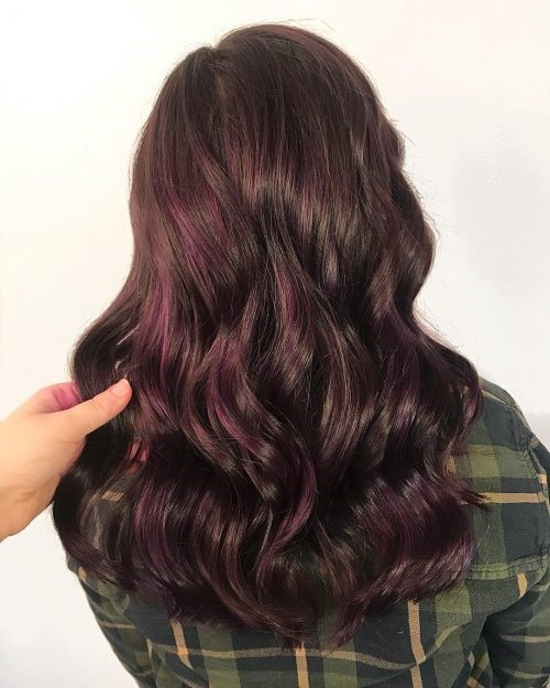 Dark Purple Brown Hair Color