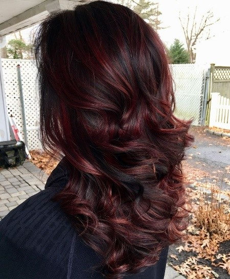 Red Wine Highlights