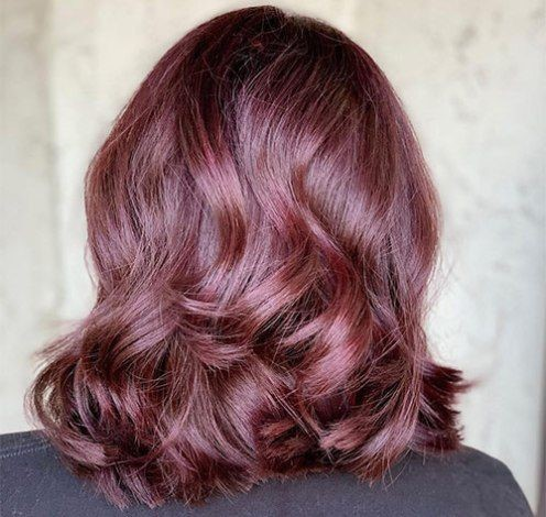 Wine Rose Brown Hair